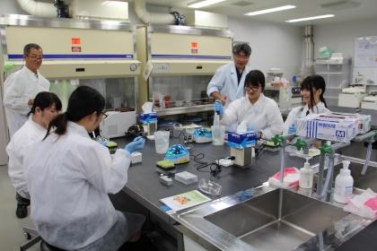 DNA実習の様子