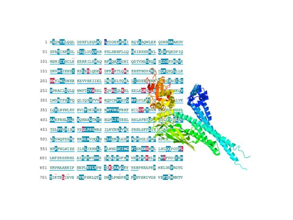 遺伝子変異による病変の予測(NL...