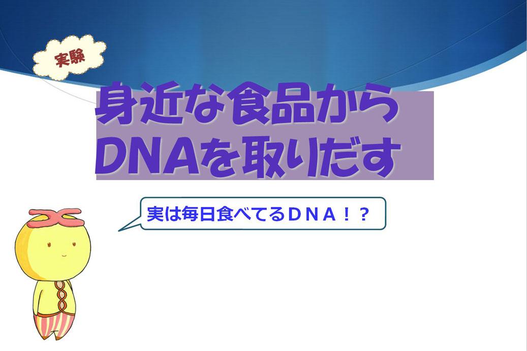 千葉県立木更津高等学校「平成30年度 分子生物学実験講座Ⅰ」