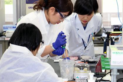 船橋市教育研究会理科部会「分子生物学講座」
