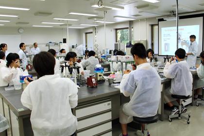 かずさの森のDNA教室