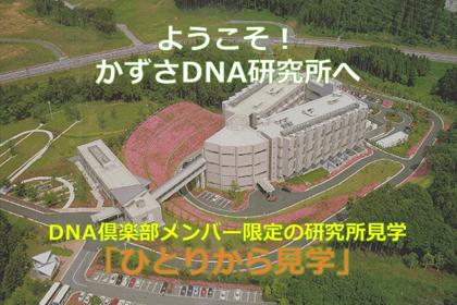 DNA倶楽部